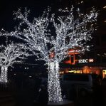 FAIRY lights 7