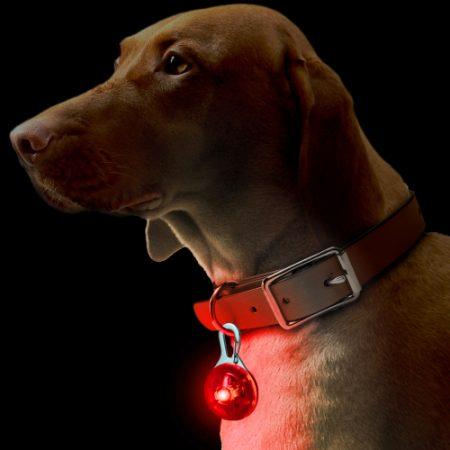 DOG/PET LED PENDANT CLIP ON SAFETY NIGHT LIGHT